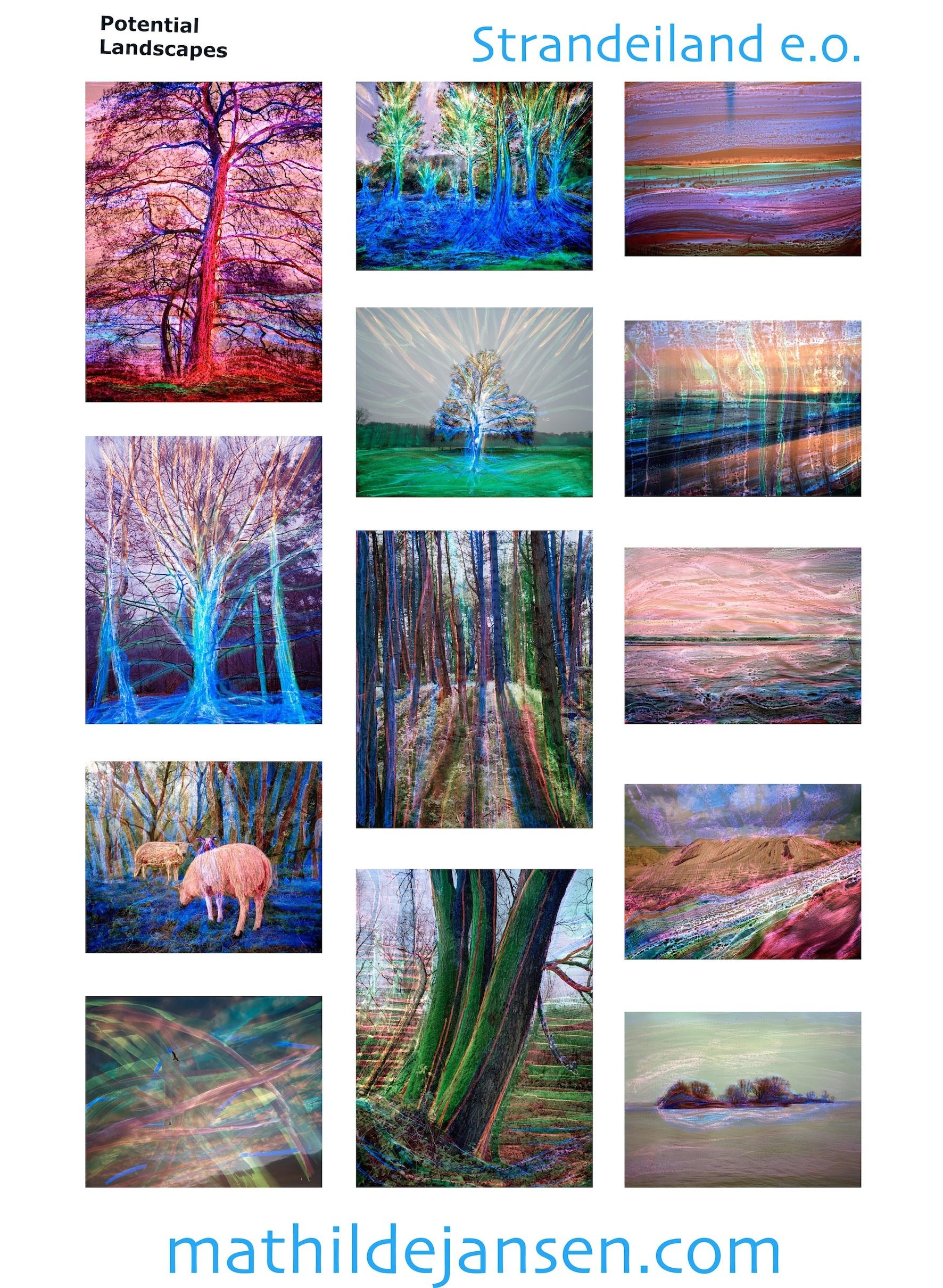 Potential Landscapes (1st flyer)